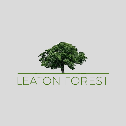 Link to Leaton Forest website portfolio page